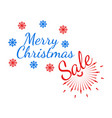 merry christmas banner and giftcard vector image