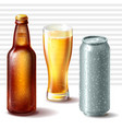 beer bottle glass and aluminum can vector image