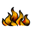 cartoon image of fire icon vector image vector image