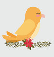 cute yellow bird in branch with flower vector image