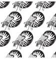 hand drawn shellfish nautilus in realistic vector image vector image