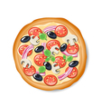 Isolated tasty Italian pizza vector image