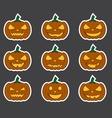 pumpkin3 vector image vector image