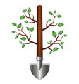shovel with branches and leaves for the garden vector image vector image