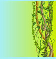 twisted wild lianas branches background vector image vector image