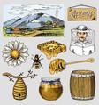 apiary farm hand drawn vintage honey making vector image vector image