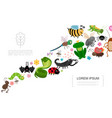 flat insects and animals concept vector image