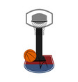 isolated basketball ball and a net vector image vector image