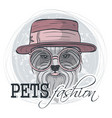 pets fashion look vector image
