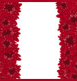 red chrysanthemum border vector image vector image
