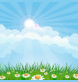 summer meadow landscape vector image