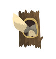 tail of wolf sticking out of hollow tree hollowed vector image vector image