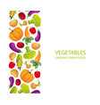 vegetables organic farm food banner template vector image