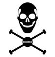 human skull and bones vector image