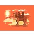 Camel in desert flat vector image