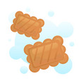 fresh cracker vector image