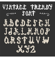 Hand drawn trendy font vintage alphabet vector image vector image