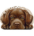 labrador puppy wall sticker vector image vector image