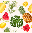 pineapple and watermelon seamless vector image vector image