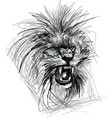 sketch of lion head vector image