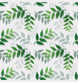 tropical leaves isolate on white background vector image vector image