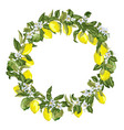 citrus wreath in graphic with blooming flowers vector image vector image