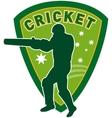 cricket player batsman australia vector image vector image
