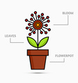 Flower in flowerpot vector image