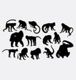 monkey ape animal silhouette vector image vector image