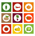 round icons vegetables on colorful background vector image vector image