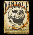 skull tee graphic design vector image vector image