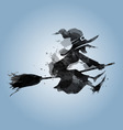 a flying witch vector image