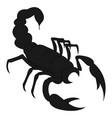 black scorpion on white background vector image vector image