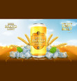 light beer ads template vector image vector image