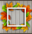 box frame autumn leaves wood background vector image vector image
