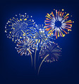 colorful fireworks exploding vector image