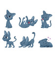 cute bacats funny little domestic animals toy vector image