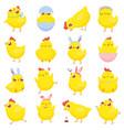 easter chicks spring bachicken cute yellow vector image vector image