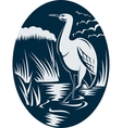Heron wading in the marsh or swamp vector image
