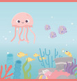 jellyfish shrimp fishes life coral reef cartoon vector image