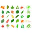 leaf icon set cartoon style vector image vector image