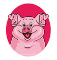 pig portrait on white background vector image
