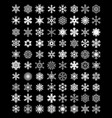 set of white snowflakes vector image