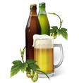 beer mug hops two beer bottles vector image vector image