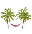 hammock hanging between two palm-trees vector image vector image