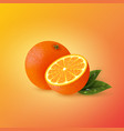realistic orange with leaves vector image