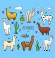 set cute alpaca llamas or wild guanaco on the vector image vector image