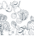 vegetables and fruitshand draw vector image vector image