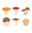 set with mushrooms vector image