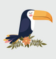 cute toucan bird in branch with flower vector image